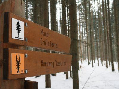 Felswandergebiet Bayerischer Wald, Winterwandern durch die Steinklamm Schneeschuhwandern im Bayerischen Wald