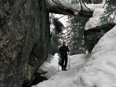 Felswandergebiet Bayerischer Wald, Schneeschuhwandern im Bayerischen Wald