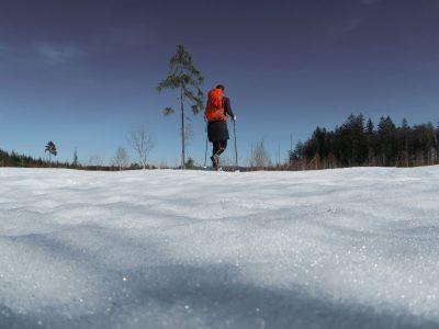 Finsterauer Filz, Moor, Winterwanderung auf den Siebensteinkopf, Schneeschuhwandern Winterwandern Bayerischer Wald