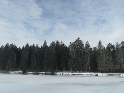Stausee Großarmschlag im Winter, Winterwandern durch die Steinklamm Schneeschuhwandern im Bayerischen Wald