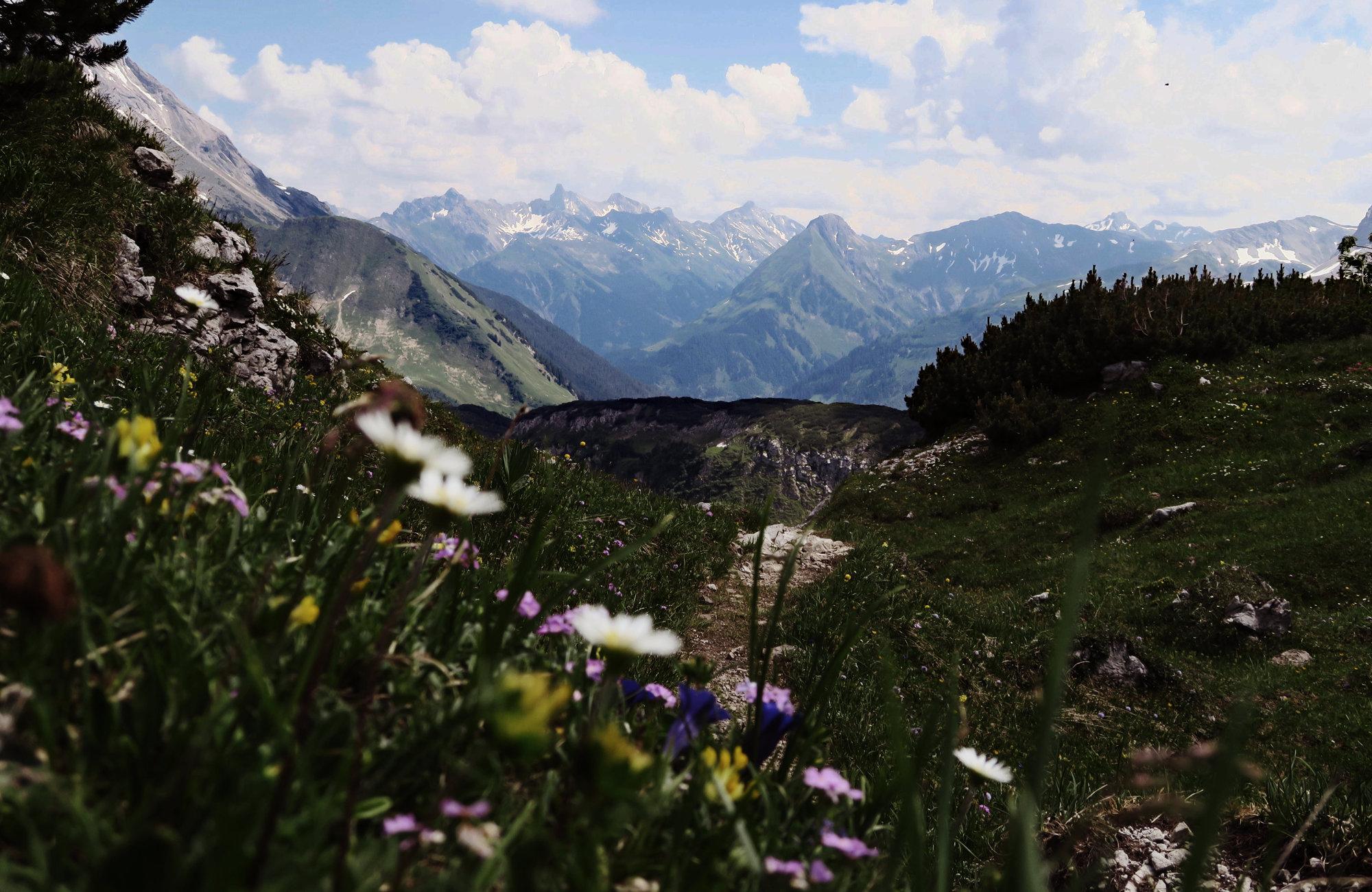 Blick auf die Lechtaler Alpen, Wandern im Frühling, Wanderideen Frühling, Wanderungen Frühling, Weitwanderweg Frühling
