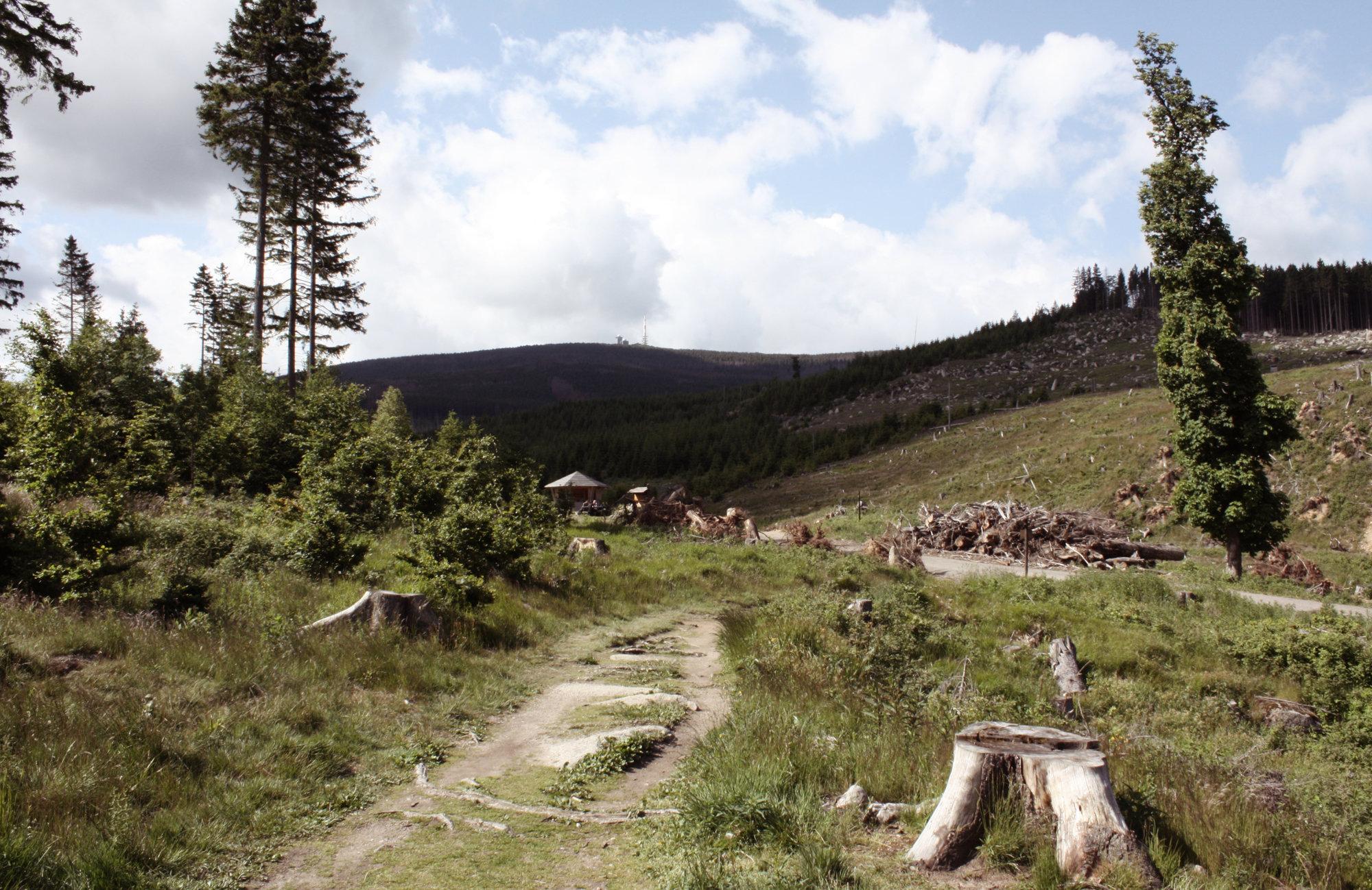 Auf dem Heinrich-Heine-Weg im Harz, Wandern in Deutschland
