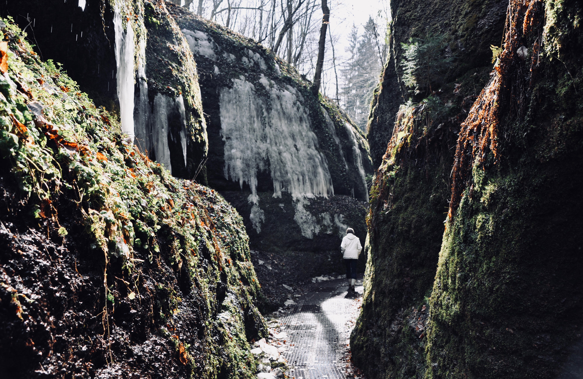Wandern in Thüringen in der Drachenschlucht, Wandern in Deutschland