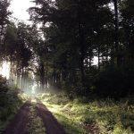 Wandern in Deutschland, Wanderungen, Bundesland