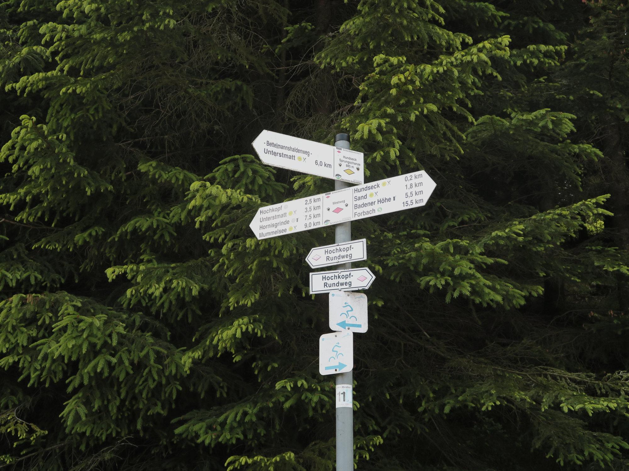 Wegweiser im Schwarzwald - immer gut ausgeschildert