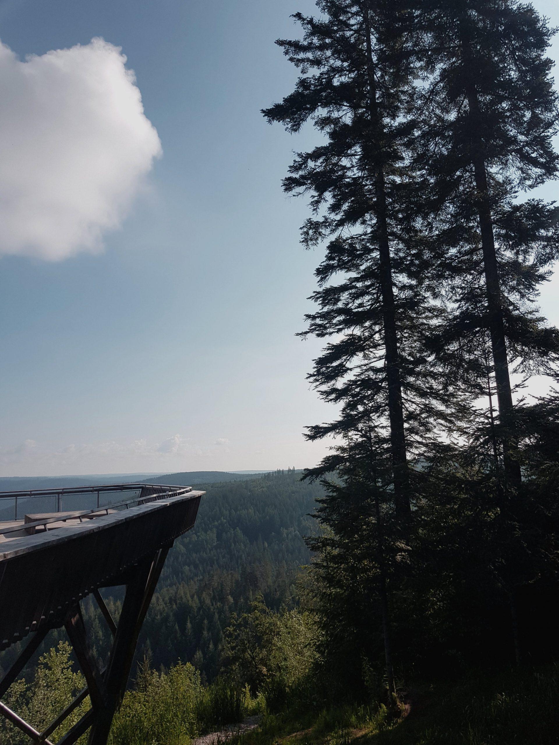 Aussichtsplattform Ellbachsee