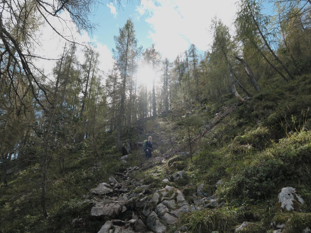 Aufstieg Mooslahnerkopf mit Herbstlicht