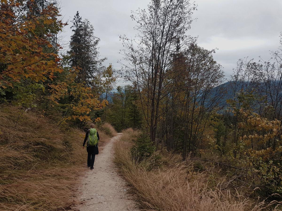 Abstieg nach Schönau im Herbst bei Nebel