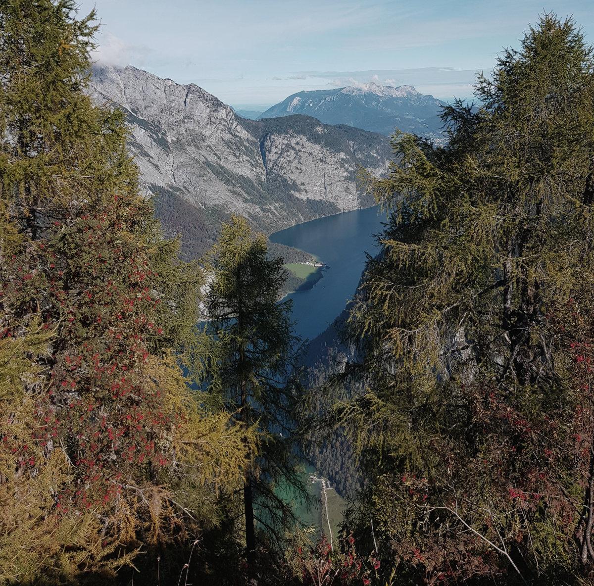 Grandioser Ausblick vom Halsköpfl auf den Königssee
