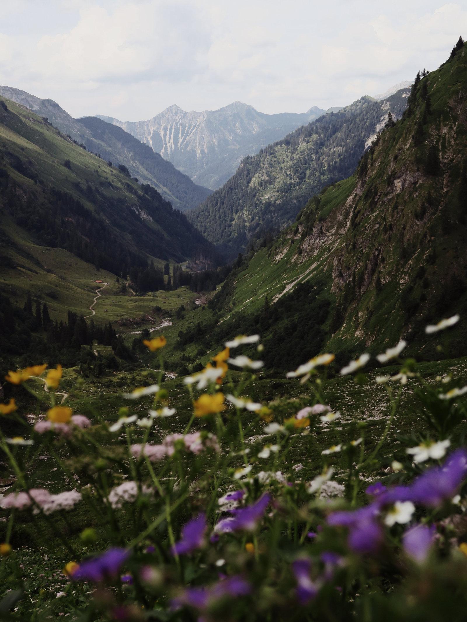 Blick hinunter ins Tal, Hüttentour in den Allgäuer Alpen